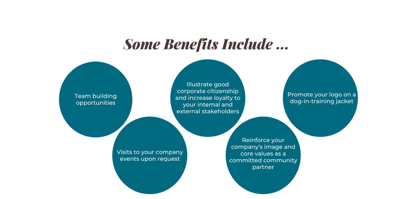 3 Sponsorship Programs (10)