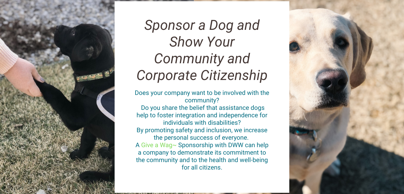 Sponsor a Dog and Show Your Community and Corporate Citizenship (2)